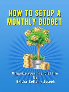 How to setup a Monthly Budget: Organize your financial life by Ericka Joseph, http://www.amazon.com/dp/B00B6QF3HC/ref=cm_sw_r_pi_dp_Uh6brb1NGN264