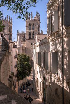 Cathédrale Saint-Pierre de Montpellier in the background