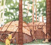 Native American: Eastern Woodland Indians information