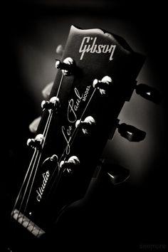 tokai guitare