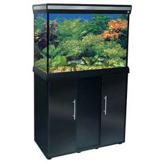 Penn Plax Delta Queen Rectangular Aquarium And Stand, 29 Gallon