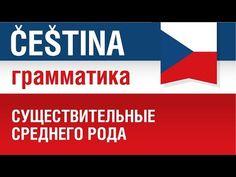 Существительные среднего рода. Чешский язык. - YouTube