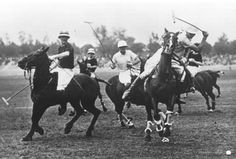 We share with you some polo curiosities. Polo is one of the oldest sports that we know of, and of course, in all these years of the game, has pro Adolfo Cambiaso, Equestrian Stables, Olympic Games, Olympics, Tourism, Old Things, Polo, Horses, History