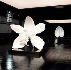 Gorgeous flower sculptures by Marc Quinn perform as backdrops on the runway and serve to compliment the theme for Alexander McQueen PFW Long live McQueen! Marc Quinn, Modern Art, Contemporary Art, Art Sculpture, Light Installation, Land Art, Light Art, Oeuvre D'art, Les Oeuvres