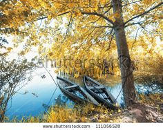 Park Of Pateira De Fermentelos Foto Stock 149489324 : Shutterstock