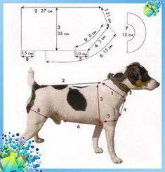 We take measurements from a dog - Dog Clothes - Nadine - Hunde - Dogs Dog Coat Pattern, Dog Clothes Patterns, Dog Wear, Dog Sweaters, Dog Costumes, Dog Dresses, Dog Coats, Pet Clothes, Dog Clothing