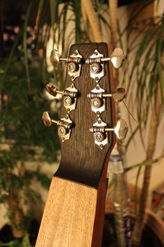Weissenborn, wedge back plate // finish not applied yet), Grover tuners by Julien Lelievre Lutherie