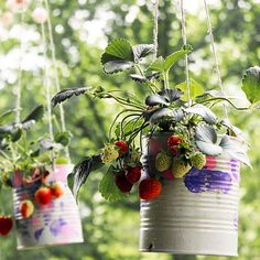 DIY Strawberrry Planter - A great way to recycle those tin cans