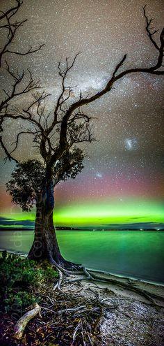 Aurora Australis - Mortimer Bay                                                                                                                                                                                                                                                                                                                                                                                                                                                                  by Brendan Davey