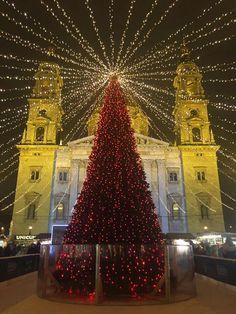 Empire State Building, Budapest, Christmas Tree, Holiday Decor, Travel, Home Decor, Teal Christmas Tree, Viajes, Decoration Home