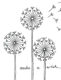 Practice your fine drawing skills with my how to draw a Dandelion project. PDF download is available at Art Projects for Kids.org