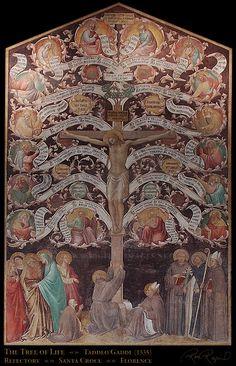Taddeo Gaddi (1300 circa – 1366), Albero della vita. (ispirata al Lignum vitae di Bonaventura da Bagnoregio). Basilica di Santa Croce, Firenze.