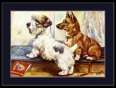 """Adorable reproduction picture of an English Print of a Sealyham Terrier and a Pembroke Welsh Corgi Dog. The word """"Sample"""" does not appear on the print. Cute Corgi Puppy, Corgi Funny, Corgi Dog, I Love Dogs, Cute Dogs, Cowboy Corgi, Corgi Mix Breeds, Corgi Facts"""
