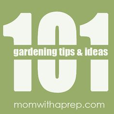 101 Vegetable Gardening Tips & Ideas | Mom with a PREP Excellent round up to get you going with all of your garden needs from planting, soil, seeds, and individual crop help.