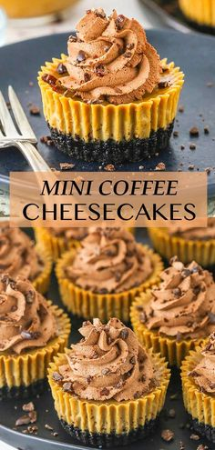 Filled with rich mocha flavors, these Mini Coffee Cheesecakes are the ultimate coffee addict's dessert! Creamy coffee cheesecake fills an Oreo cookie crust, all topped with chocolate whipped cream and chocolate covered espresso beans! Cinnamon Roll Cheesecake, Coffee Cheesecake, Best Cheesecake, Cheesecake Recipes, Dessert Recipes, Party Desserts, Baking Recipes, Delicious Desserts, Mini Cheesecakes
