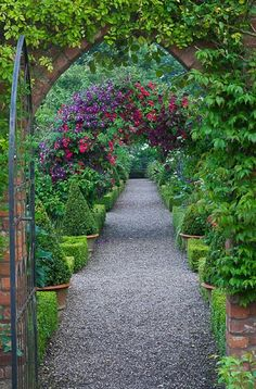 Arch with Rosa 'Crimson Showers' and Clematis 'Etoile Violette' by Clive Nichols