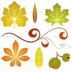 Autumn leaves  #GraphicRiver         Collect isolated autumn leaves and chestnut, element for design, vector illustration     Created: 1August11 GraphicsFilesIncluded: JPGImage #VectorEPS Layered: No MinimumAdobeCSVersion: CS Tags: art #autumn #branch #chestnut #cutout #decoration #design #drawing #floral #graphic #illustration #isolated #leaf #leaves #maple #pattern #pumpkin #tree #vector #wallpaper