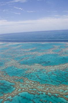 wow, where is this?  the great barrier reef?