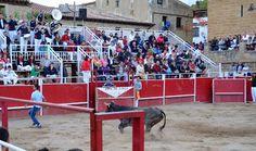 Santacara: Vacas de Santos Zapateria - (2) Wrestling, Saints, Cows, September, Fiestas, Lucha Libre