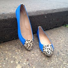 NWT Chinese Laundry Leopard Blue Flats Size 8.5 So chic! Never worn! Chinese Laundry Shoes Flats & Loafers