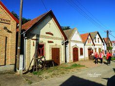 Hajós is a swabian village, famous for it's wine making, Vine street, Hungary, Nikon Coolpix B700, 4.3mm, 1/1250s (fix), ISO100, f/3.3, +0.3ev, HDR photography , 201909140919 #Hajós