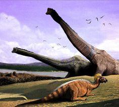 dinosaurussen radiocarbon dating gay dating sex eerste date