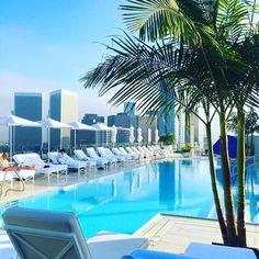 #pool @waldorfbevhills #beverlyhills #losangeles