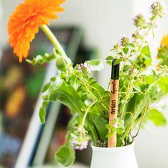 Salva il pianeta una mina alla volta, la matita personalizzata must have per le Green People!