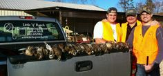"""After an Egg Bowl victory, these Rebels had a fine quail hunt at Little """"q"""" Ranch. Hotty Toddy!"""