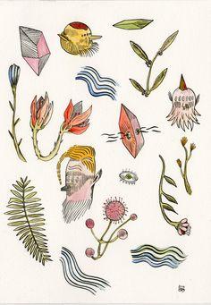 Weird Botany by Barbora Idesová, via Behance