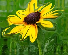 """Fresh Air"" from Suzy2.0: Floral Digital Paintings, #art, #floral, #yellow, #daisy"