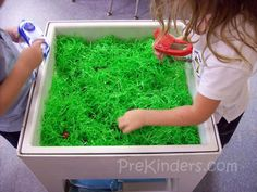 Insect sensory bin: Easter grass, plastic bugs and tweezers. Search for bugs with the tweezers and place them in a collection jar.