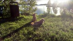 Veera and Romi enjoying the sun set