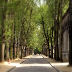 """Finish the path"" from @kjmathis on Piictu"