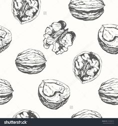 Hand-Drawn Sketch Of Walnuts. Seamless Nature Background. Fresh Organic Food. Walnuts Background. Black And White Nut Pattern. Stock Vector Illustration 332008274 : Shutterstock