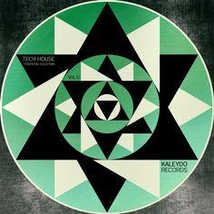 079. DJ SaF - For The Last Time (Original Mix) - Kaleydo Records [KLDLP008] - 2016/05/26