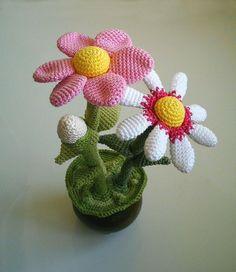 Crochet Flower Pot Free Pattern