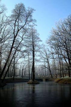 Zimowy Park Szwajcaria (fot. MZUK) #Gliwice