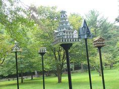 Got Bird Houses?  At FLW's Kentuck Knob in PA.