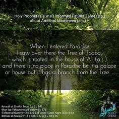 Holy Prophet (s.a.w.a.) informed Fatima Zahra (s.a.) about Ameerul Momineen (a.s.)  When I entered Paradise I saw over there the Tree of Tooba which is rooted in the house of Ali (a.s.) and there is no place in Paradise be it a palace or house but it has a branch from the Tree. References - -Amaali of Shaikh Toosi (r.a.) p 643 -Man laa Yahzorohu al-Faqih v 4 p 374 -Tafseer al-Qummi v 2 p 336-338 under Surah Najm (53):13-14 -Behaar al-Anwaar v 18 p 408 v 27 p 3 v 40 p 36 #ImamAli #HolyProphet…