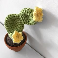 In this 4 part mini series I will be giving you 4 detailed posts on how to make your own crocheted cacti. Each blog post will contain a different cactus pattern. This pattern is for the prickly pea…