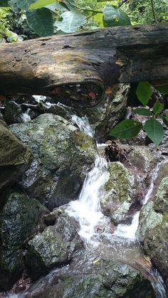 Caída de agua de un arrollo