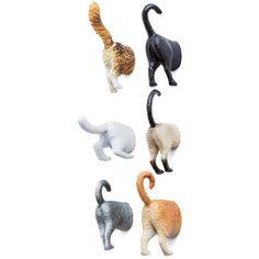 Kikkerland Cats Posterior Design Magnet Set
