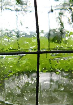 Lovely. These rain-pelted panes look just like the textures of Spectrum Glass' seedy, vecchio, and rainwater glass; 100S, 100V and 100RW.