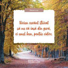 Biblia, Fotografia, Words