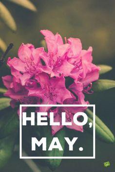 Elegant Hello, May.