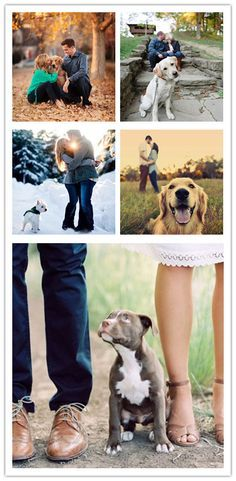 15 Oh So Romantic Engagement Photos With Dogs |  http://www.weddinginclude.com/2015/08/15-oh-so-romantic-engagement-photos-with-dogs/