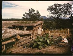*Garden adjacent to the dugout home of Jack Whinery, homesteader. Pie Town, New Mexico, September 1940. Reproduction from color slide. Photo by Russell Lee. Prints and Photographs Division, Library of Congress