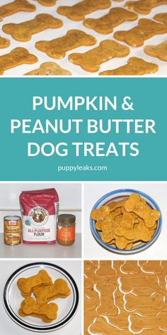 Pumpkin & Peanut Butter Dog Treats - Puppy Leaks - Looking for a nice and simple dog treat recipe? These peanut butter & pumpkin dog treats are one of my favorites because they're so easy to make. Diy Dog Treats, Puppy Treats, Healthy Dog Treats, Soft Dog Treats, Sweet Potato Dog Treats, Best Treats For Dogs, Frozen Dog Treats, Healthy Food, Homemade Dog Cookies