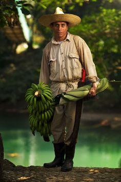 Harvesting bananas, Tapijulapa, Tabasco. Mexico